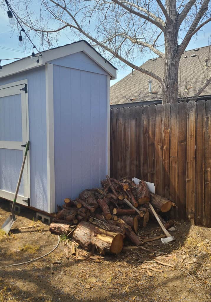 Fire wood laying on ground beside the storage shed and wood fence