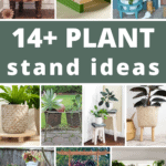 Collage of different plant stand indoors and outdoors with text overlay that says 14+ plant stand ideas