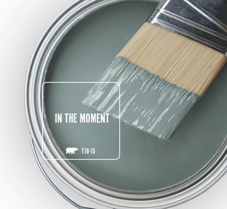 Behr in the moment paint color in can and a paint brush dipped in it